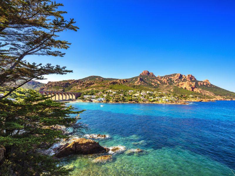 Esterel rocks beach coast, tree and sea. Cannes Saint Raphael Co