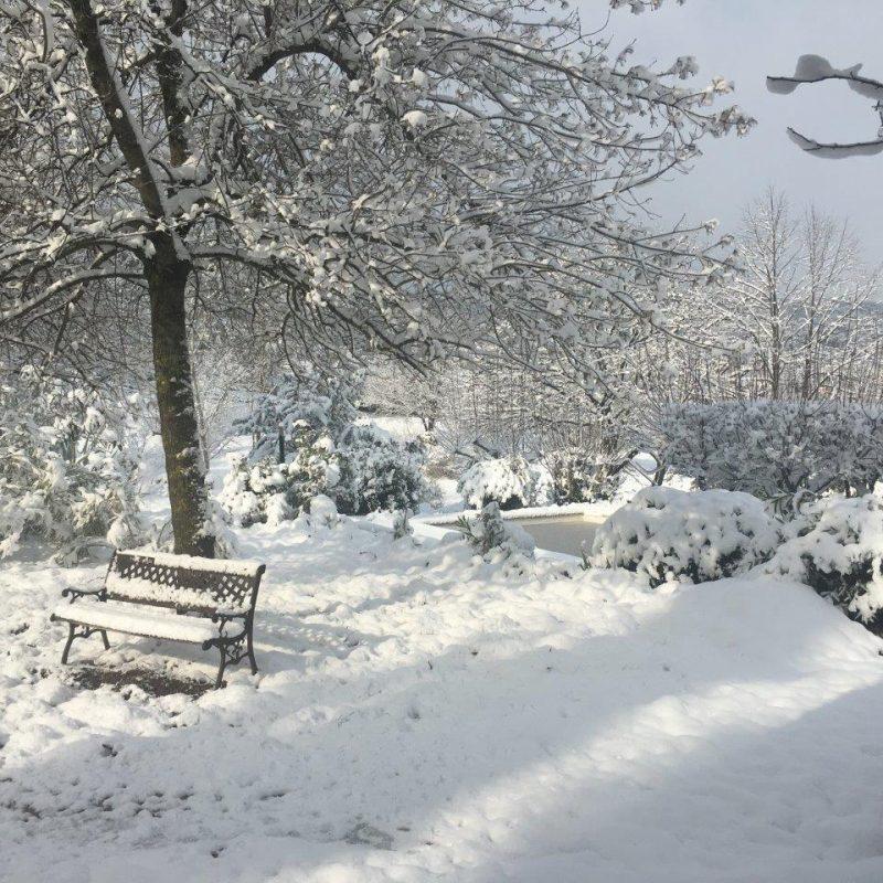 neige avec banc