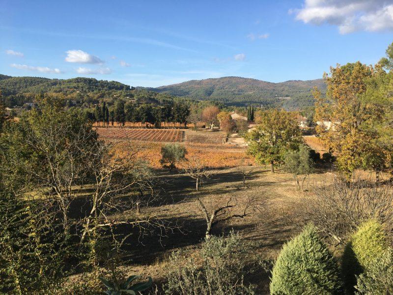 pr et vignes automne