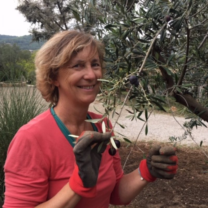 sophie olivier